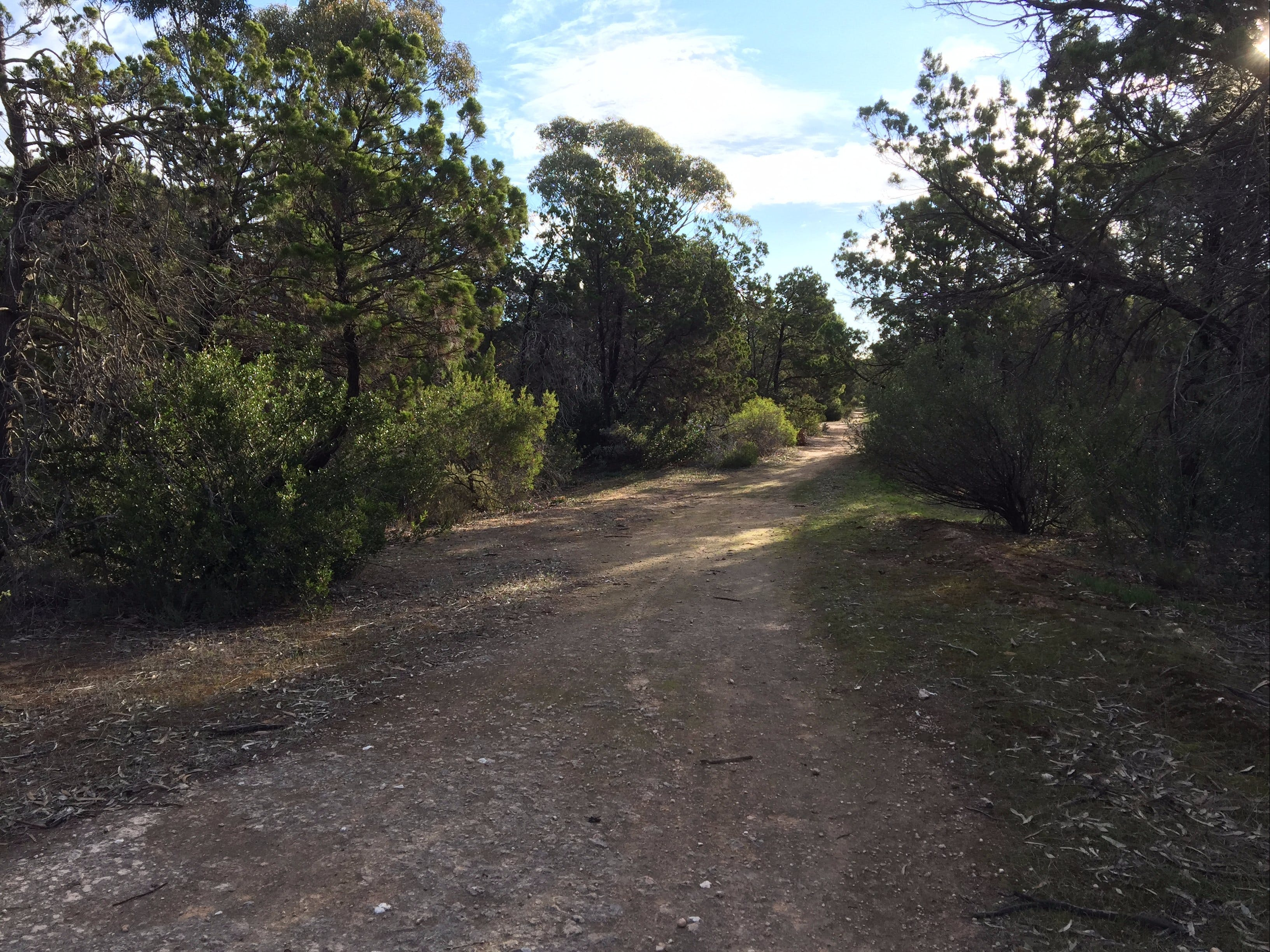Victoria Park Moonta monthly walks - Accommodation Gold Coast