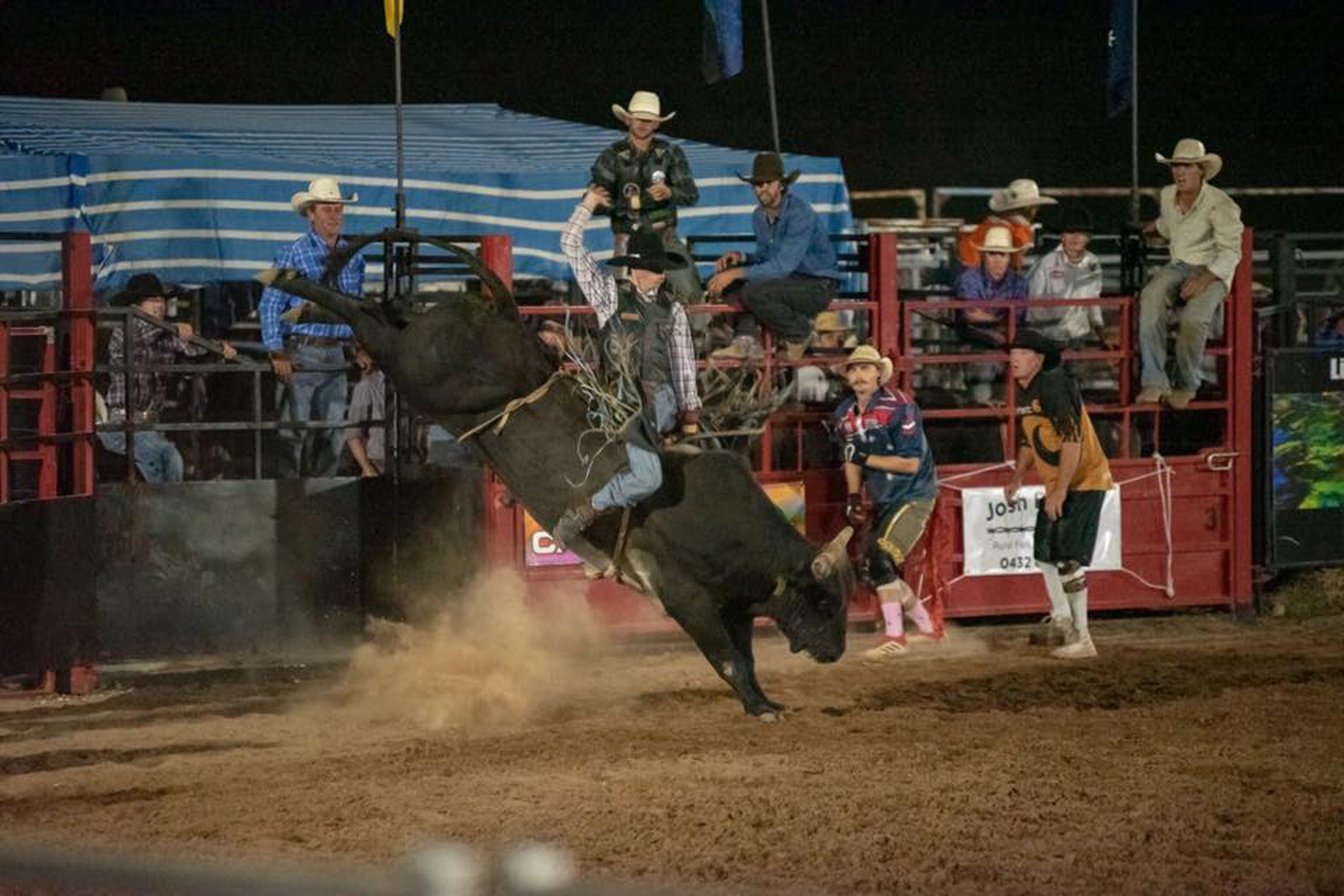 Black Opal Bull and Bronc Ride - Accommodation Gold Coast